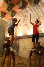 "Adrenalin-Kick fŸr Fernanda Brandao bei ""Fort Boyard"""