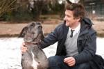 Tiermessies außer Kontrolle: Bonnie hat den Kampf verloren - TV News