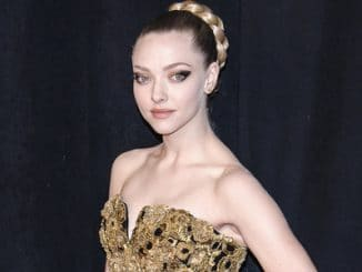 "Amanda Seyfried - ""Les Miserables"" New York City Premiere"