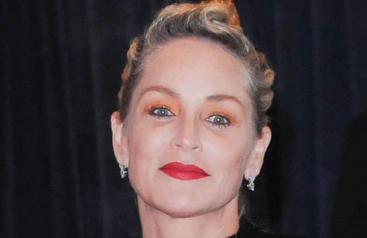 Sharon Stone - 2013 White House Correspondents Association Dinner