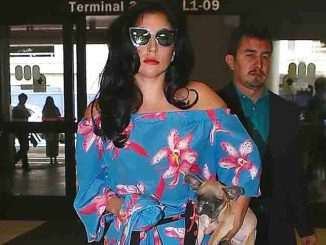 Lady Gaga Sighted Arriving at LAX on May 8, 2015
