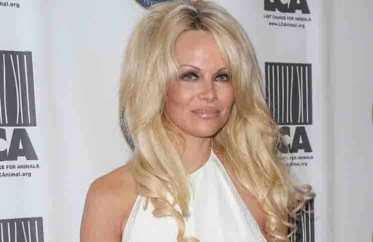 Pamela Anderson - 2015 Last Chance for Animals Benefit Gala