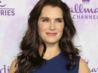 Brooke Shields - Hallmark Channel and Hallmark Movies and Mysteries Winter 2016 TCA Press Tour