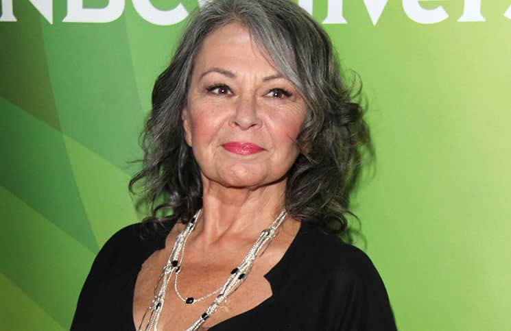 Roseanne Barr - NBCUniversal's 2014 Summer Press Day