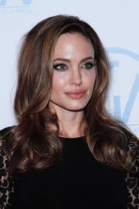 Angelina Jolie - 23rd Annual Producers Guild Awards