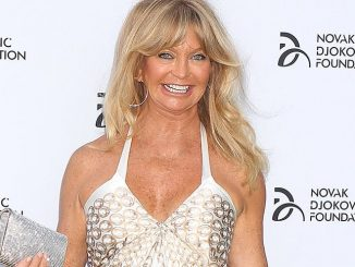 Goldie Hawn - Novak Djokovic Foundation 2013 Gala Dinner