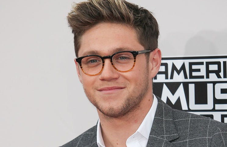 Niall Horan - 2016 American Music Awards - 3