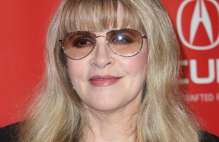 Stevie Nicks - 59th Annual GRAMMY Awards