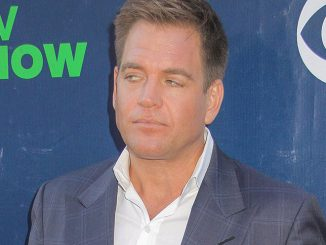 Michael Weatherly - CBS, CW and Showtime 2015 Summer TCA Party