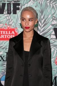 Zoe Kravitz - 10th Annual Women in Film Pre-Oscar Cocktail Party