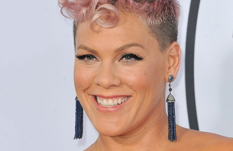 Pink - 2017 American Music Awards
