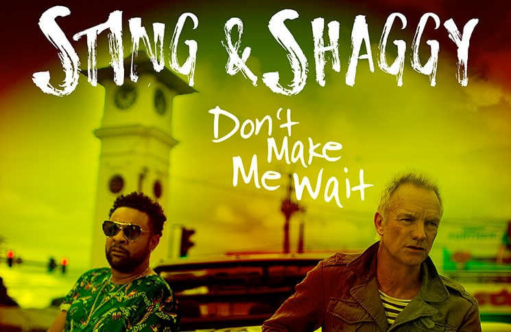 Shaggy Sting - Dont Make Me Wait Cover thumb