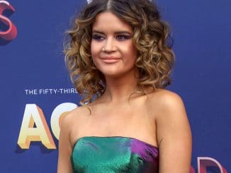 Maren Morris - 53rd Annual Academy of Country Music Awards