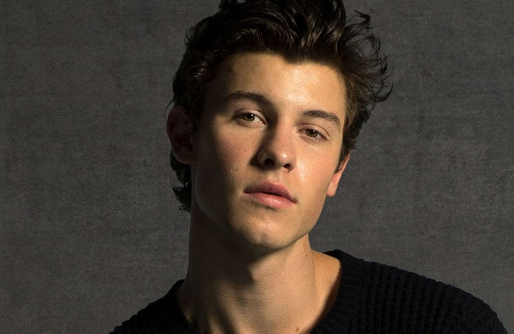 Shawn Mendes 2018 614 thumb