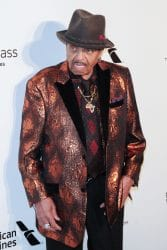 Joe Jackson - 26th Annual Elton John AIDS Foundation's Academy Awards Viewing Party