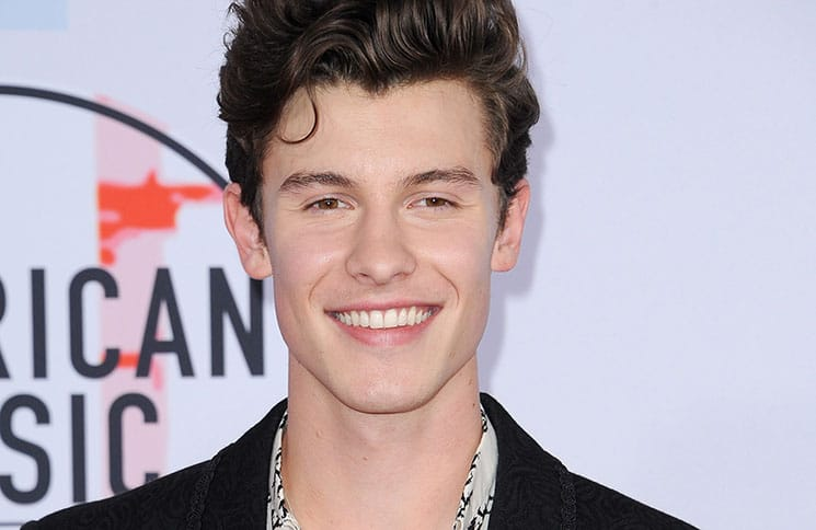 Shawn Mendes - 2018 American Music Awards