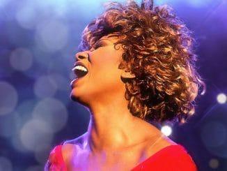 Tina Turner 30351318-1 thumb