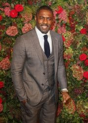Idris Elba - 64th Annual London Evening Standard Theatre Awards