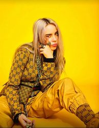 Billie Eilish 30356394-1 big