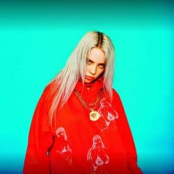 Billie Eilish 30357601-1 big