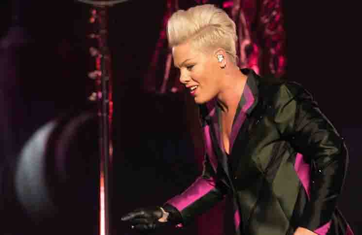 P!nk - Pink in Concert at the Little Caesar's Arena in Detroit