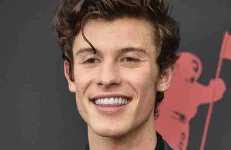 Shawn Mendes - 2019 MTV Video Music Awards - Arrivals