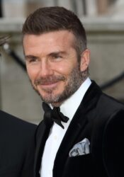 "David Beckham - Netflix's ""Our Planet"" TV Series World Premiere"