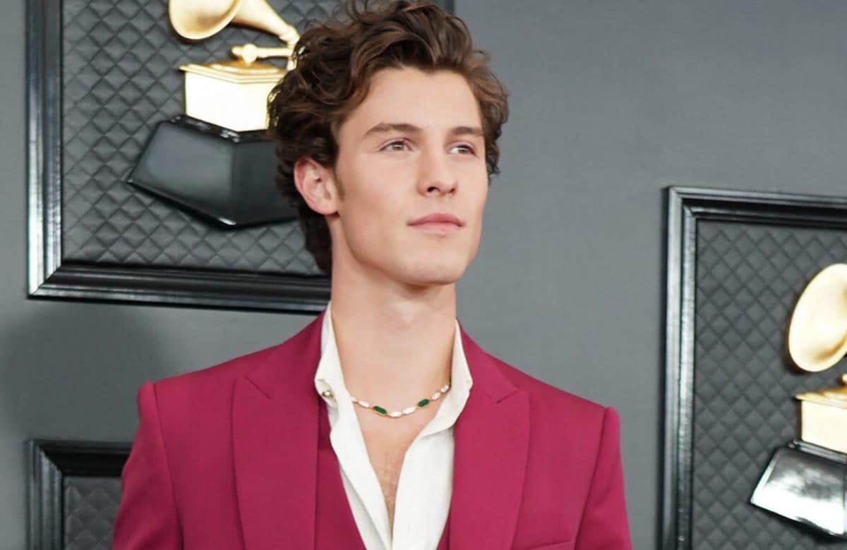 Shawn Mendes - 62nd Annual GRAMMY Awards