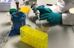"""""""planet e."""": Was die Wissenschaft über SARS-CoV-2 weiß"""