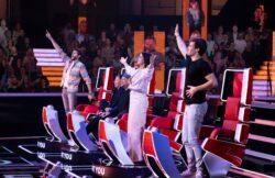 """Buzzern ab 27.02.2021 samstags: Die """"The Voice Kids""""-Coaches"""