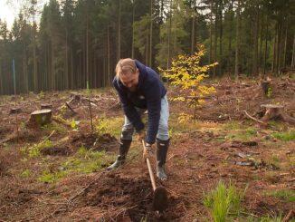 Operation Wald - So retten wir unseren Planeten