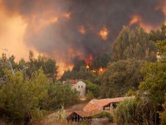 """Waldbrände im Fokus von """"planet e."""" im ZDF"""