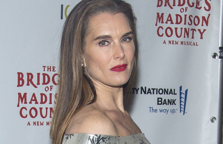 "Brooke Shields - ""The Bridges of Madison County"" the Musical New York City Premiere"