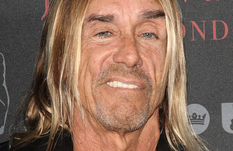 Iggy Pop: Neues Album in Planung - Musik News