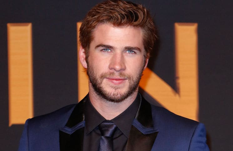 "Liam Hemsworth - ""The Hunger Games: Catching Fire"" Germany Premiere"