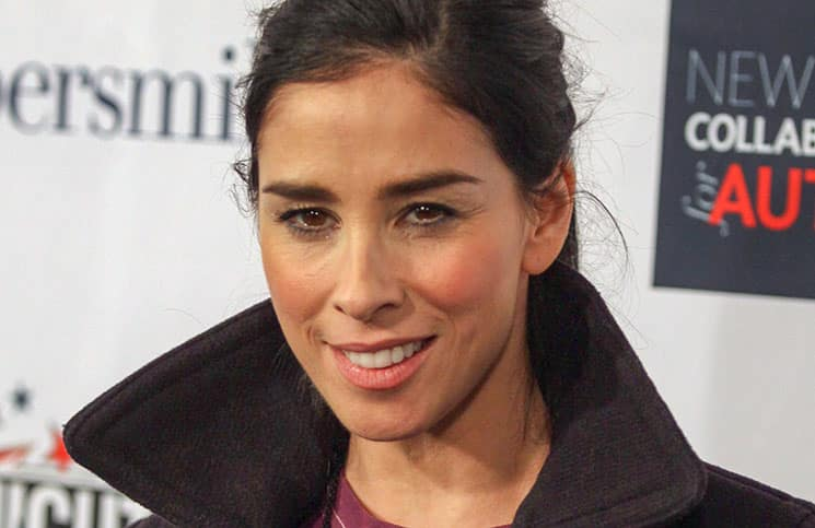 """Sarah Silverman - 2015 Comedy Central's """"Night of Too Many Stars: America Comes Together for Autism Programs"""" - Arrivals"""